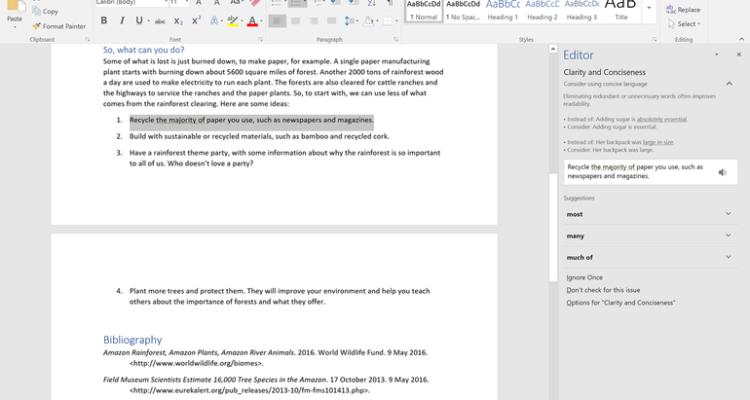 Screenshot of Word Editor